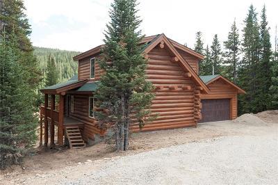Blue River, Breckenridge Single Family Home For Sale: 194 Carroll Lane
