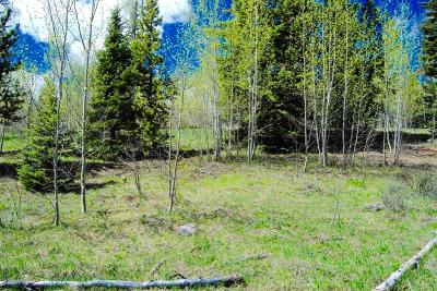Silverthorne Residential Lots & Land For Sale: 1445 Golden Eagle Road