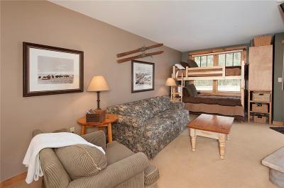 Summit County Condo For Sale: 100 Dercum Square #8390