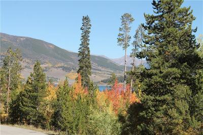 Silverthorne Residential Lots & Land For Sale: 142 Kings Court