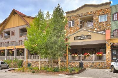 Summit County Condo For Sale: 135 Dercum Drive #8554