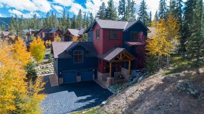 Dillon, Silverthorne, Summit Cove Single Family Home For Sale: 20 Legend Circle
