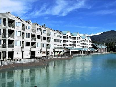 Summit County Condo For Sale: 22080 Highway 6 #1479