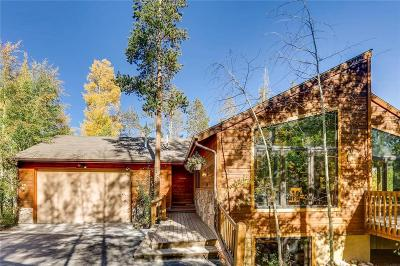 Silverthorne Single Family Home For Sale: 476 Royal Red Bird Drive
