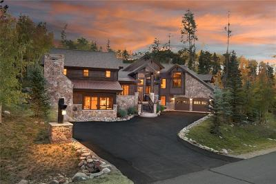 Dillon, Silverthorne, Summit Cove Single Family Home For Sale: 515 Two Cabins Drive