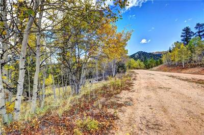 Jefferson, Como Residential Lots & Land For Sale: 365 Bonus Gulch Way