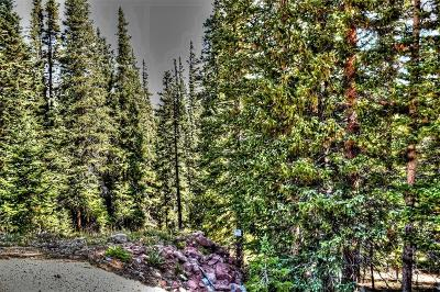 Fairplay, Alma Residential Lots & Land For Sale: Tbd Silverheels Circle