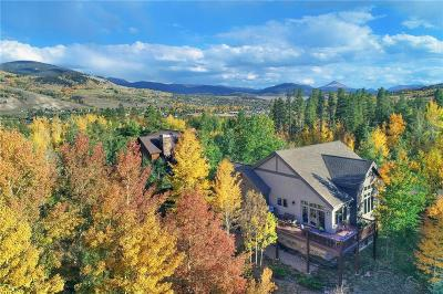 Silverthorne Single Family Home For Sale: 1713 Falcon Drive