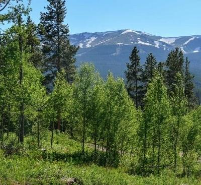 Summit County Residential Lots & Land For Sale: 1072 American Way