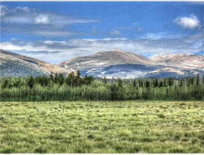 Fairplay, Alma Residential Lots & Land For Sale: Tbd Thurber