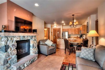 Summit County Condo For Sale: 135 Dercum Drive #8583