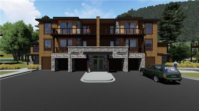 Dillon, Silverthorne, Summit Cove Condo For Sale: 1090 Blue River Parkway #102