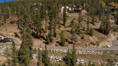 Breckenridge Residential Lots & Land For Sale: 91 Cr 451