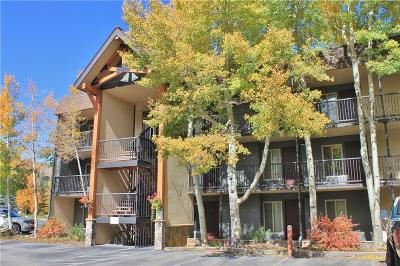 Summit County Condo For Sale: 1127 9000 Divide Road #108