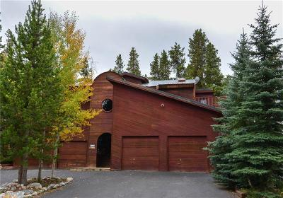 Blue River, Breckenridge Duplex For Sale: 88 Tomahawk