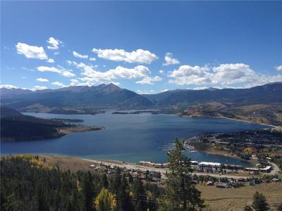 Dillon Condo For Sale: 240 Lake Dillon Drive #321
