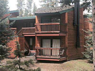 Breckenridge Condo For Sale: 1120 Ski Hill Road #C-20