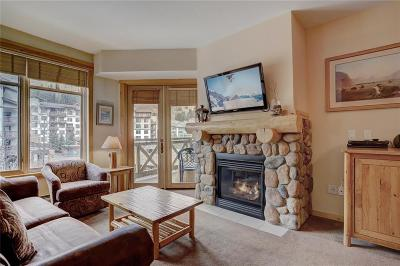 Copper Mountain Condo For Sale: 164 Copper Circle #304
