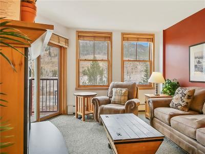 Summit County Condo For Sale: 140 Ida Belle Drive #8222