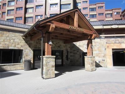 Blue River, Breckenridge Condo For Sale: 535 S Park Avenue #401