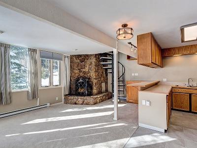 Summit County Condo For Sale: 156 Lance Lane #1