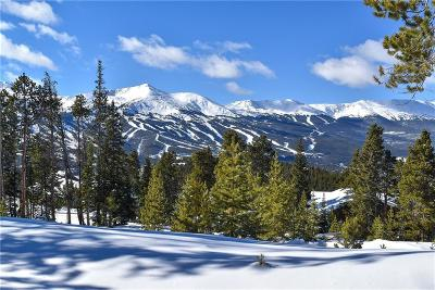 Breckenridge Residential Lots & Land For Sale: 306 N Fuller Placer Road