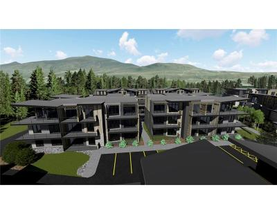 Dillon, Silverthorne, Summit Cove Condo For Sale: 890 Blue River Parkway #612