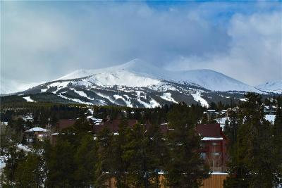 Breckenridge CO Condo For Sale: $370,000
