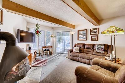 Breckenridge Condo For Sale: 1155 Ski Hill Road #114