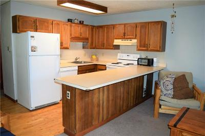 Silverthorne Condo For Sale: 371 W 4th Street #201