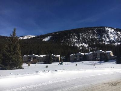 Breckenridge Condo For Sale: 107 Peaks View Court #313