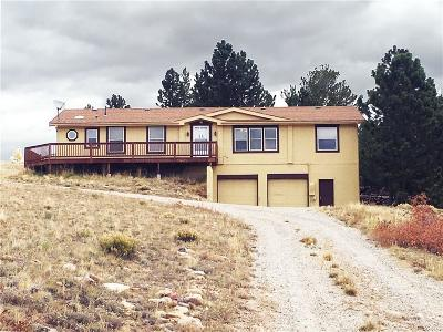 Park County Single Family Home For Sale: 3352 High Creek Road