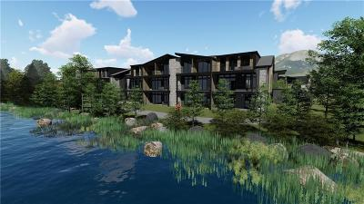 Silverthorne Condo For Sale: 890 Blue River Parkway #814