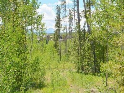 Dillon, Silverthorne Residential Lots & Land For Sale: 162 Kings Court