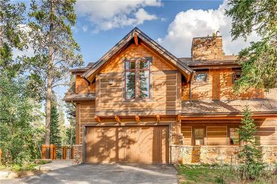 Breckenridge CO Condo For Sale: $460,000