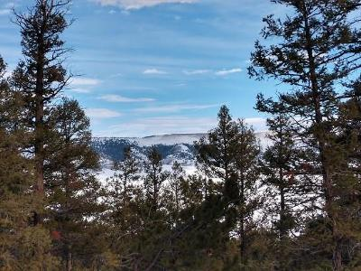 Fairplay, Alma Residential Lots & Land For Sale: Middle Fork Vista