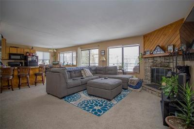 Dillon, Silverthorne, Summit Cove Condo For Sale: 9876 Ryan Gulch Road #206