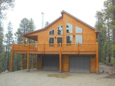 Summit County Single Family Home For Sale: 1517 Mountain View Drive
