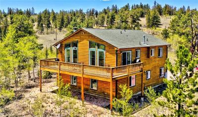 Park County Single Family Home For Sale: 1213 Ute Trail