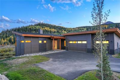 Dillon, Silverthorne, Summit Cove Single Family Home For Sale: 37 Hart Trail