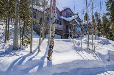 Breckenridge Single Family Home For Sale: 782 Estates Drive