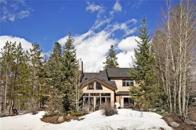 Silverthorne Single Family Home For Sale: 395 Black Hawk Circle