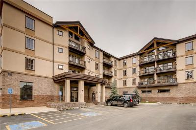 Summit County Condo For Sale: 22787 Us Hwy 6 #411