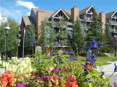 Breckenridge Condo For Sale: 100 S Park Avenue #407