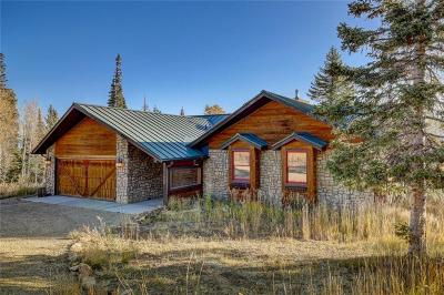 Silverthorne Single Family Home For Sale: 295 Blue Spruce Road