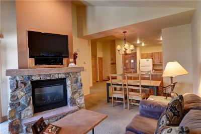 Summit County Condo For Sale: 135 Dercum Drive #8623