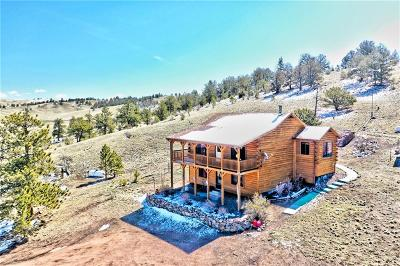 Park County Single Family Home For Sale: 312 Ahlers Lane