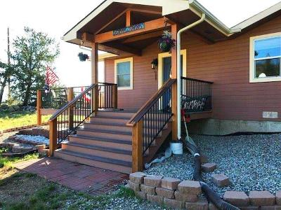 Park County Single Family Home For Sale: 644 Chief Trail