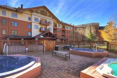 Copper Mountain Condo For Sale: 105 Wheeler Circle #407