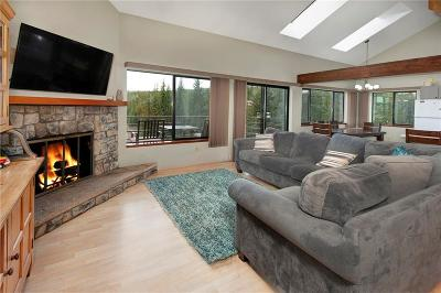 Silverthorne Condo For Sale: 98000 Ryan Gulch Road #E-201